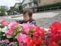 おひさま公園にお散歩。お花も咲いてて、電車も見ることができて、大喜び。